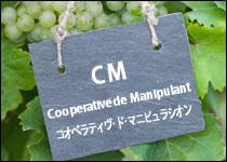 シャンパーニュ 生産者タイプ別 CM