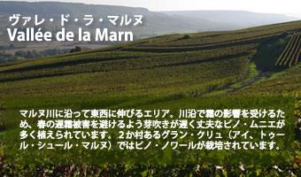 シャンパーニュ通への道 ヴァレ・ド・ラ・マルヌ