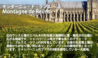 シャンパーニュ通への道 モンターニュ・ド・ランス