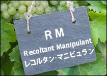 シャンパーニュ 生産者タイプ別 RM