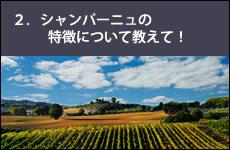 シャンパーニュの豆知識 3