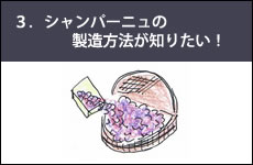 シャンパーニュの豆知識 4